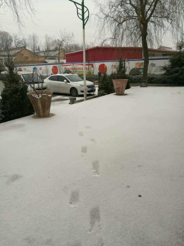 陕西多地出现雨雪天气 今明雨雪天气还将持续
