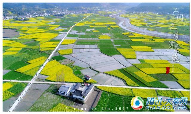 汉中油菜节精彩纷呈 勉县着力打造明年主会场
