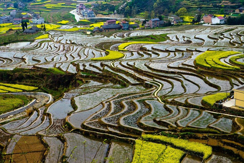 景区位于汉阴县漩涡镇,连片共1.2万余亩,距今逾250年,景区面积