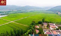344:改革开放40年富县农业