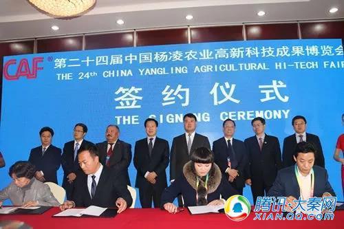 农高会首场集中签约府谷成功签约36.28亿元