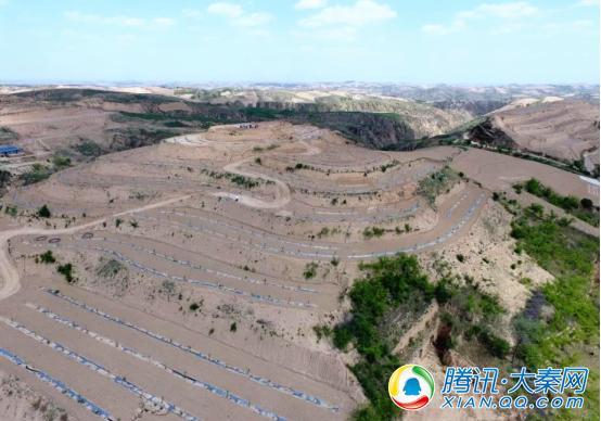 """横山区开创""""南塔模式"""" 4000余亩宽幅梯田助农增收"""