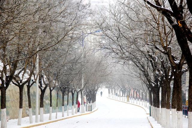 美腻 漫天飞舞银花绽放的雪中铜川