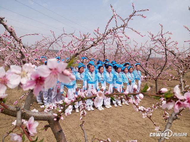 大荔百名学生桃花源里诵经典 感受传统文化魅力