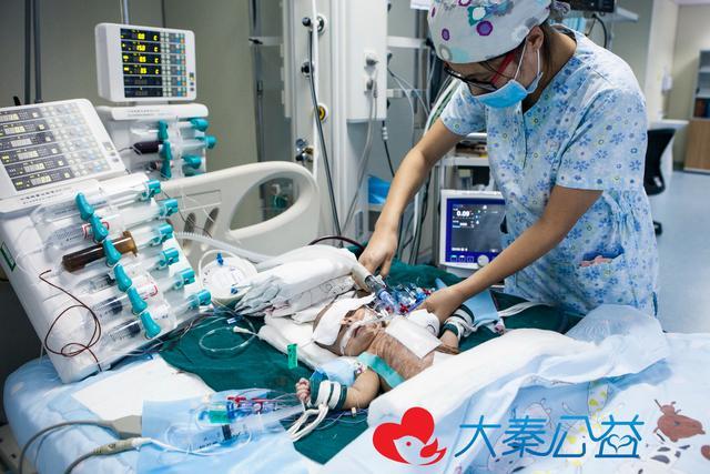 早产儿患7种病 父母因没钱治病曾想放弃治疗