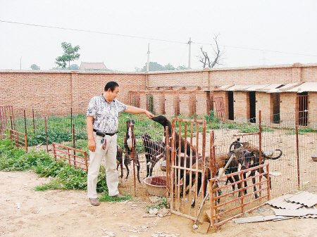 渭南一养殖场凌晨遭抢 丢13条格力犬价值21万