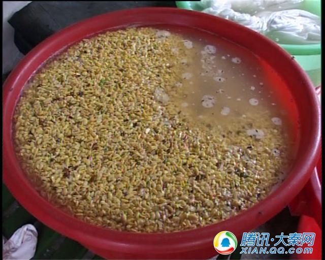 道家产物 佛家珍馐 看榆林豆腐如何抒写它的传奇