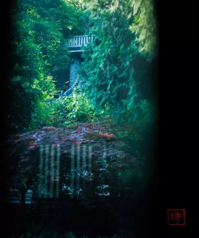 这处藏在秦岭的避世幻境仙气十足 美若桃源 看完就想去隐居!