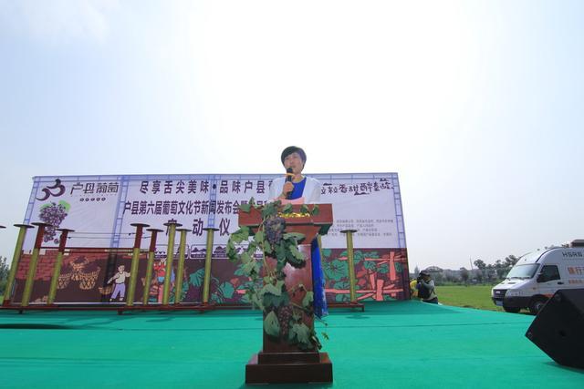 户县第六届葡萄文化节盛大启动