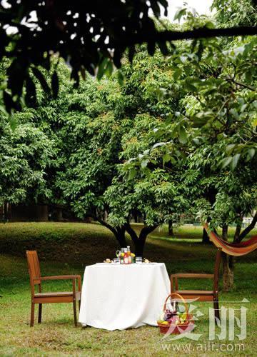 6技傍身 惊艳你的野餐会