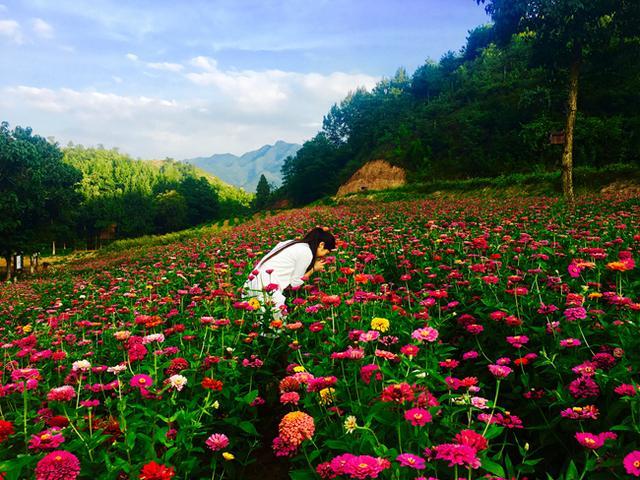 国庆豫西大峡谷美食节和观瀑节开幕 百草园免门票