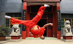 237:陕西红拳