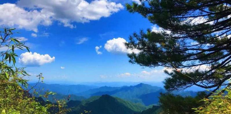 爬山莫远方 秦岭看最美云海