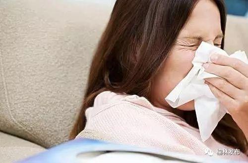 沙蒿是鼻炎高发过敏源?国家林业局将做相关研究