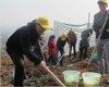 陕西全民义务植树运动开展30周年
