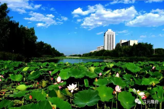 尊敬的西安人 江元隆府邀您到中衛看藍天