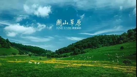 """中国西北唯一高山草原 媲美""""呼伦贝尔""""!"""