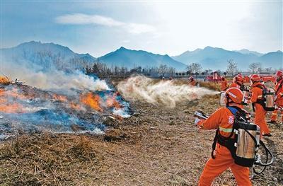 森林消防员使用脉冲式灭火设备灭火 记者 王健 摄图片