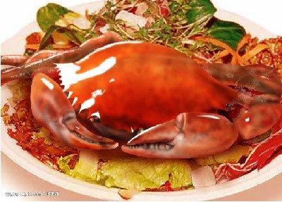 美味大闸蟹的20多种做法 (图)