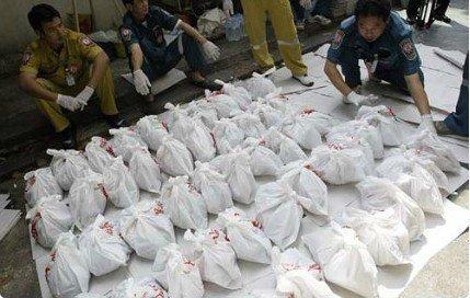寺庙发现2000具婴儿尸体