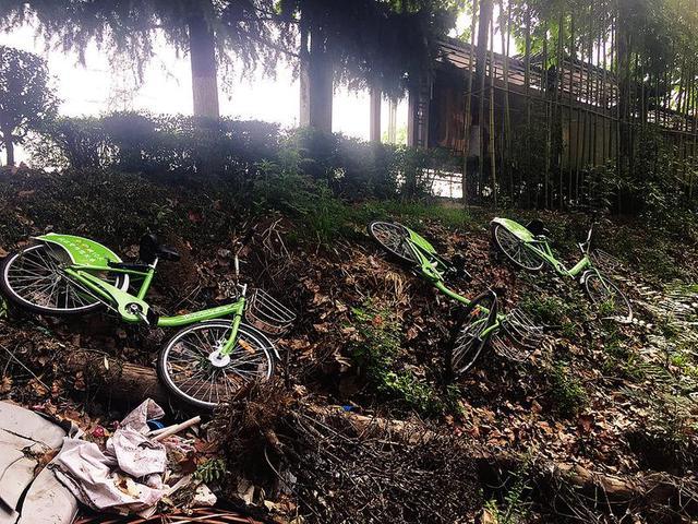 宝鸡四辆共享单车被扔沟里无人管 或因影响交通