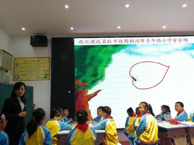 沣西实验学校老师参加西北名校精品课展示活动