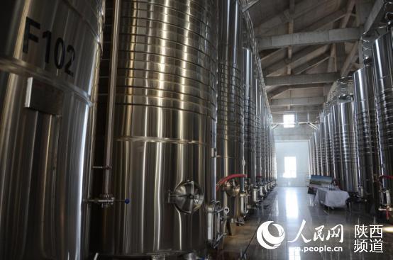 荒漠生出酿酒葡萄