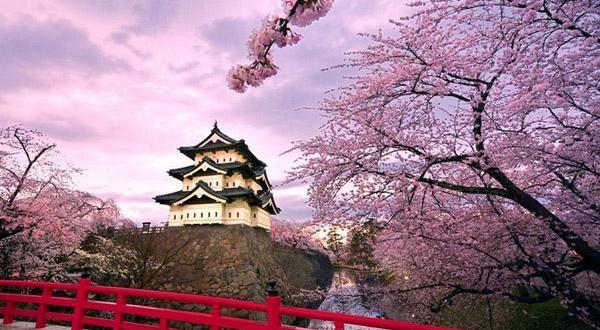 西安直飞日本包机即将起航 赴日旅游再迎新高潮