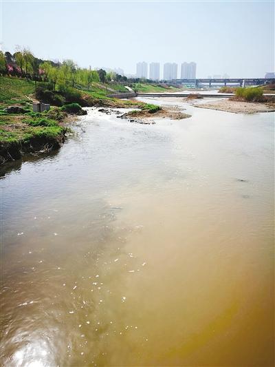 排污口藏身桃花潭公园 大量黑水排放至浐河里