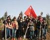 96陕西多地开展植树活动