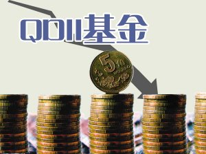 QDII基金九成产品不赚钱 亏损账本揭秘