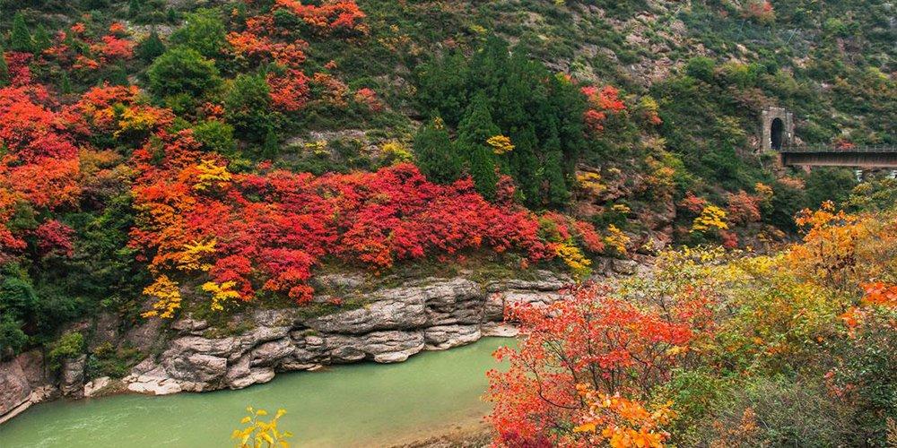 陕西最美红叶地原来在这里