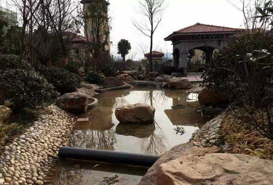 程v餐厅1000平米餐厅景观带首次亮相_泳池-晋中襄阳情趣有频道榆次图片