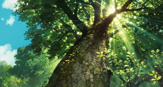 白马森林小镇——襄阳森林食品集结地