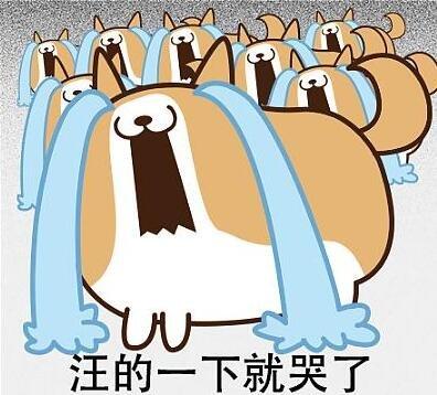 2017襄阳知名小学划片详情,新房及二手房价位新鲜出炉
