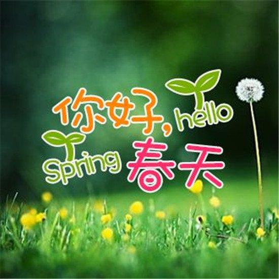 这个三月,你会用哪种姿势享受春天?
