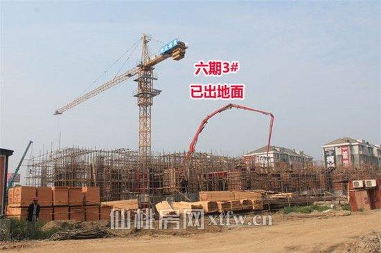 元泰未来城6月工程进度:6期3#已出地面