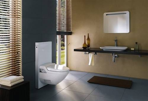 无死角的壁挂卫生间 私属空间浪漫而独特