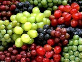 吃货福利|恒大翡翠龙庭葡提盛宴甜蜜开启,新鲜葡萄等您抱回家!
