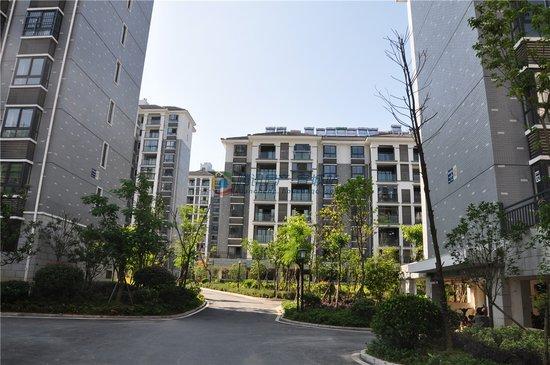 【悦府】百变公寓13.88万/套起 现房触底一口价
