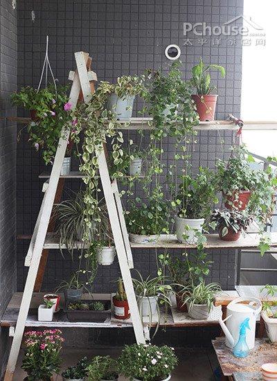 舒适的阳台,美美的搭配