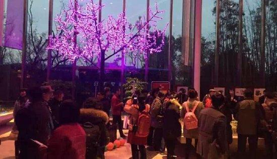 【黄山大观】第三届安徽旅游春晚盛大举行