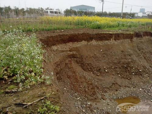 砂土被盗挖 上述无果 政府部门踢皮球 老百姓如何自处?
