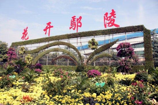 """鄢陵:""""中国花木第一县""""的绿色崛起"""