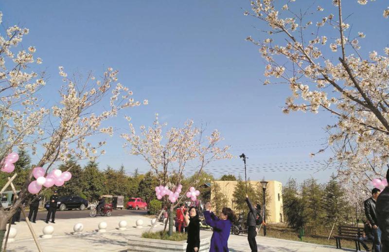魏都区首届樱花旅游节开幕