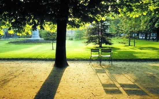 公园地产品质生态家园 成就优质生活空间