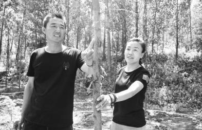 """""""傻夫妻""""卖掉房子开荒山 15载青春种树10万余棵"""