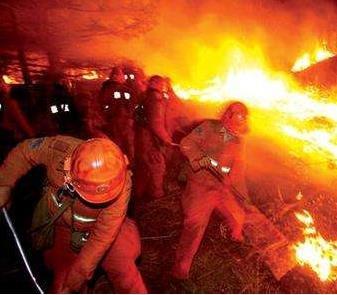 村民电野兔引发烟台磁山大火 山火于16日清晨扑灭