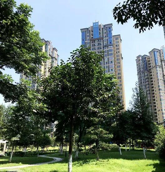 住在公园里的梦想生活 12月16日公园里3期盛大开盘