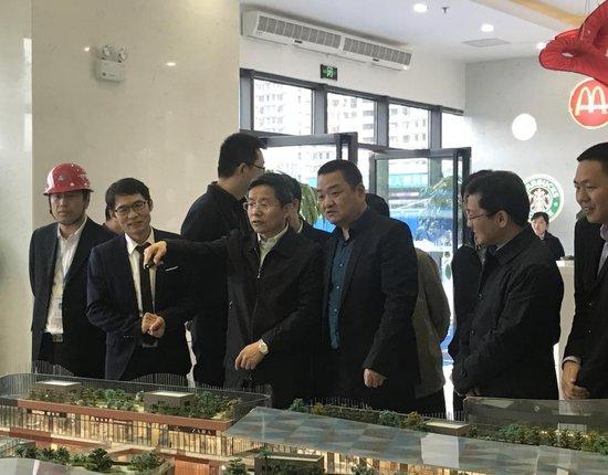 益阳市委书记一行视察海洋城 新地标获高度称赞